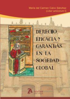 Portada de Derecho, Eficacia Y Garantias En La Sociedad Global