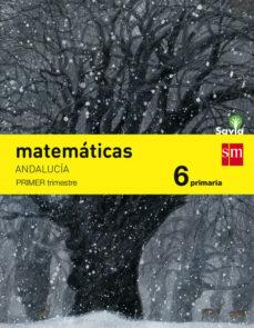 Portada de Matematicas 6º Educacion Primaria Trimestral Savia Andalucia Ed 2015
