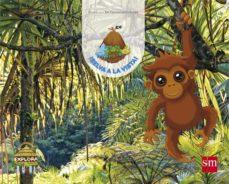 Portada de Explora Selva A La Vista Nivel 2 2 Tm 4 Años Mec Castellano Ed 20 17