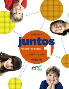 Portada de Aprender Es Crecer Juntos 1º Educacion Primaria Tercer Trimestre. Cuadricula Andalucia / Castilla Y Leon