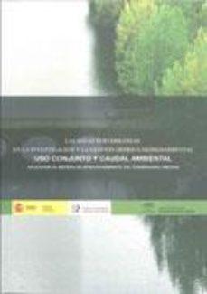 Portada de Aguas Subterraneas En La Investigacion Y La Gestion Hidrica Medio Ambiental: Uso Conjunto Y Caudal Ambiental
