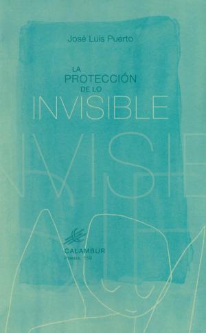 Portada de La Proteccion De Lo Invisible