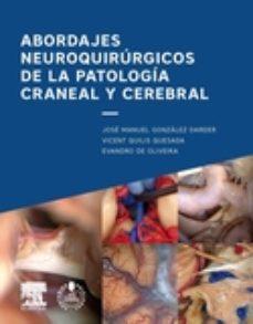 Portada de Abordajes Neuroquirurgicos De La Patologia Craneal Y Cerebral
