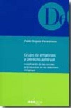 Portada de Grupo De Empresas Y Derecho De Antitrust: La Aplicacion De Las No Rmas Anticolusorias En Las Relaciones Intragrupo