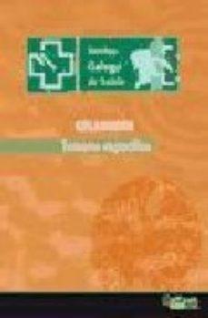 Portada de Temario Especifico Celadores Del Servizo Galego De Saude